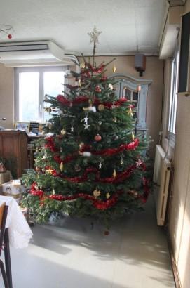 Un sapin de Noël scintillant...